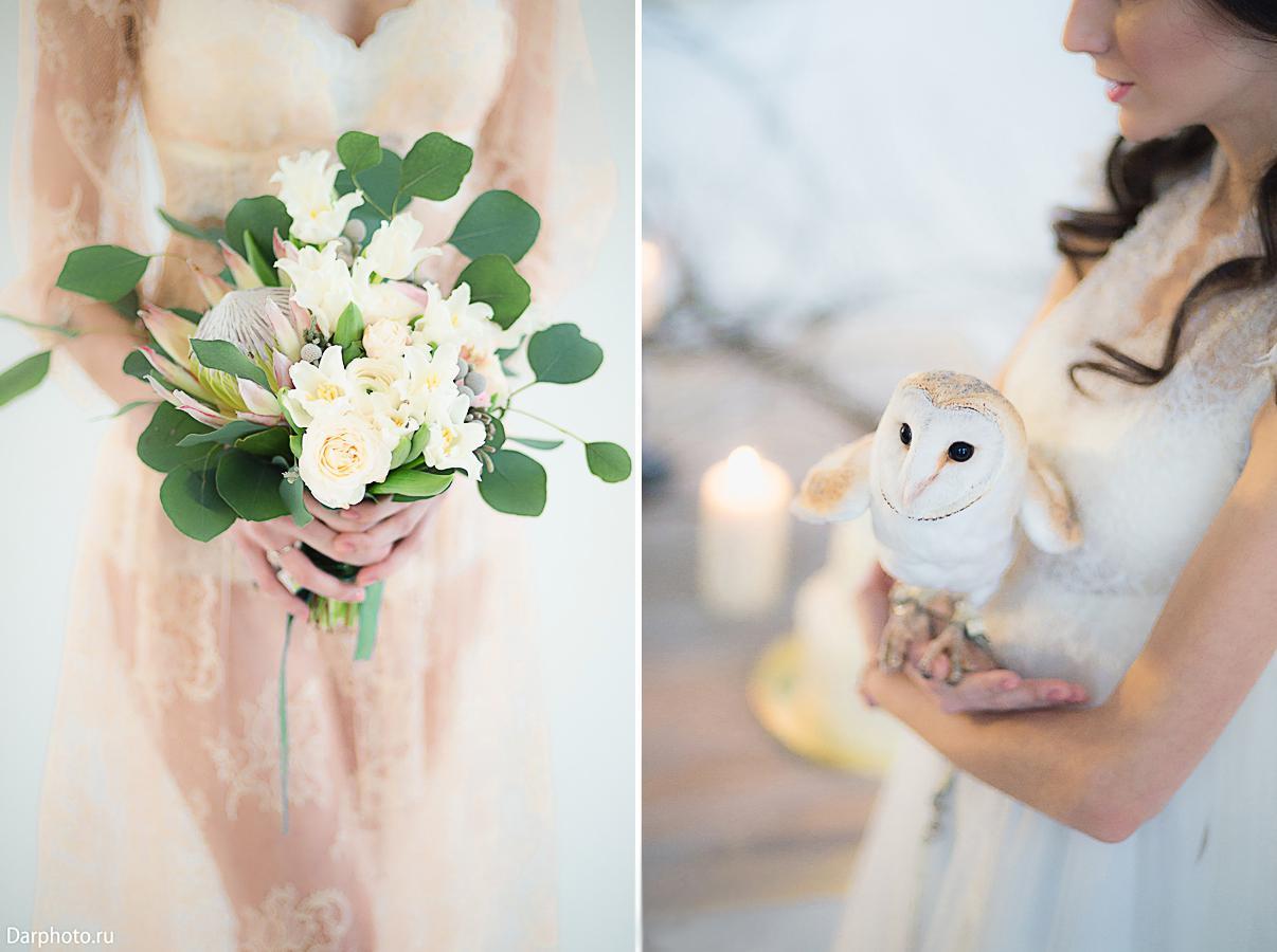 идеи для свадебной съемки: сова, животные