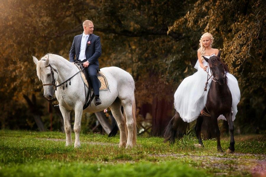 идеи для свадебной съемки:свадебная фотосессия на лошадях