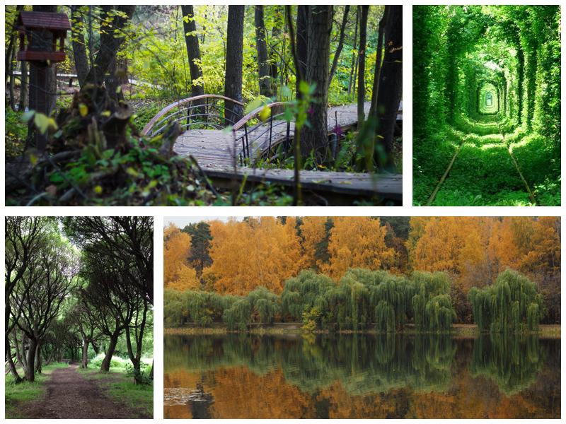 Парк Покровское-Стрешнево