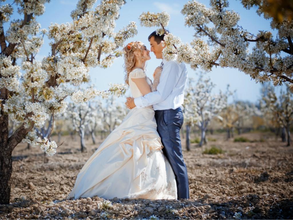 Свадьба в мае: идеи для празднования